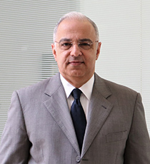 Ahmed A Wahab